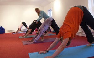 Photos from class - Tuesday Ladies in Downward Facing Dog
